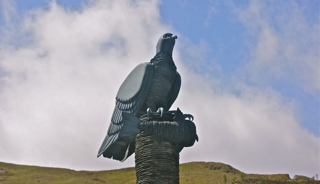 'The Honister Osprey'